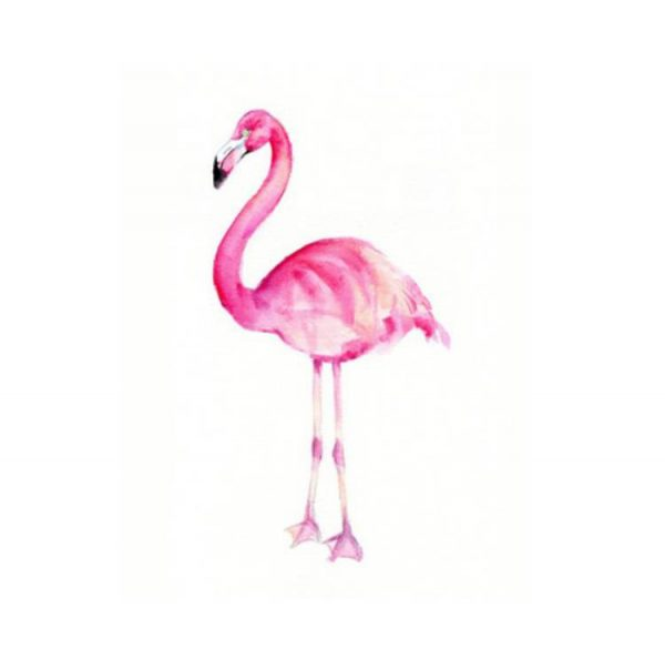 flamingo accessoires
