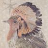 Zandkleurige sjaal Indian bird - Birds on the Run 2