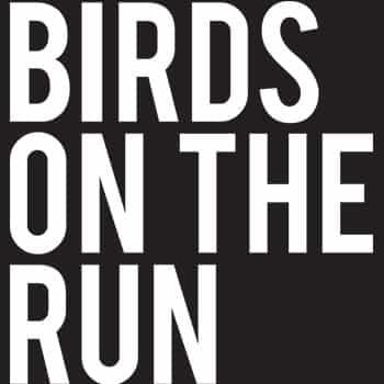 merk-birds_on_the_run